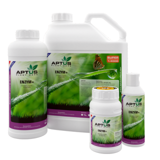 Aptus Enzym+