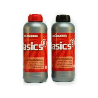 Ecolizer Basics A+B