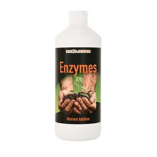 Ecolizer Enzymes