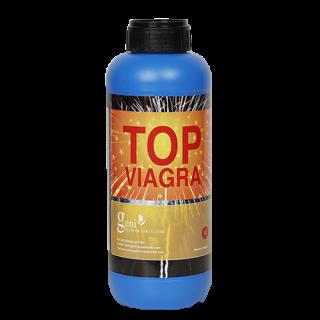 Geni Top Viagra